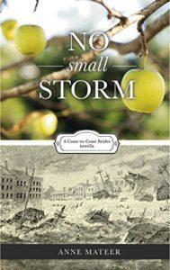 No-Small-Storm-189x300