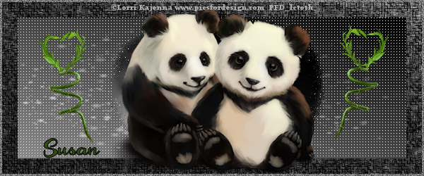 panda_pair-susan