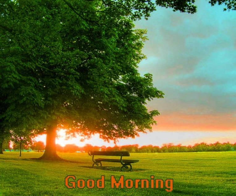 Amazing-Morning-View
