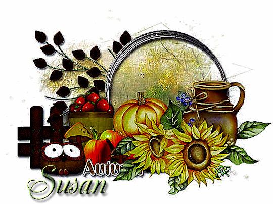 Image3 blank_1 susan
