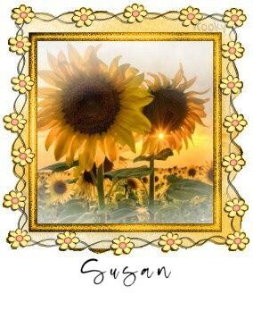 Susan KKY 150