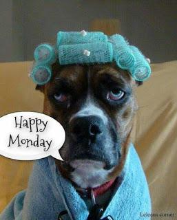 happy Monday 2