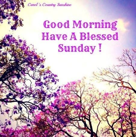 Good-Morning-Wishes-For-Sunday