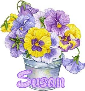 susan (4)