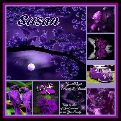 Susan-vi (4)