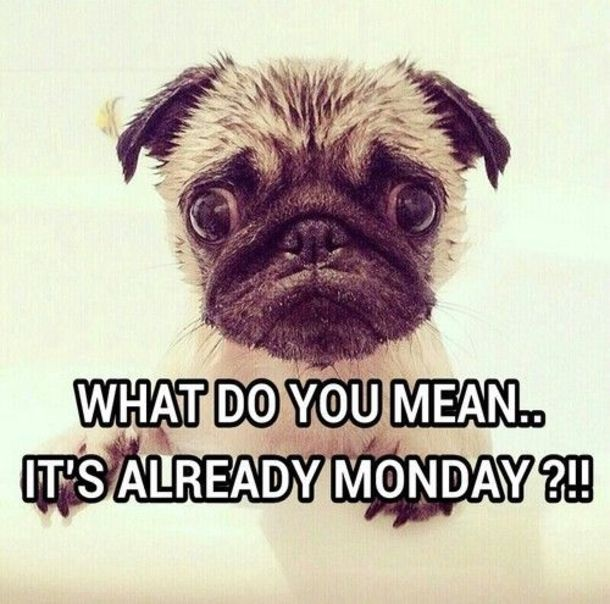 50 Of The Best Monday Quotes And Images To Love And Share