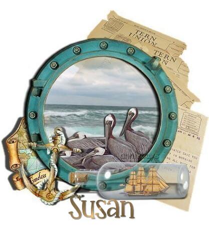 susan_birdspelicansporthole-vi